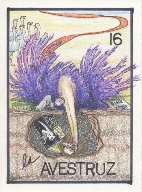 La Avestruz 16